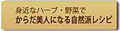Blog_botum_13