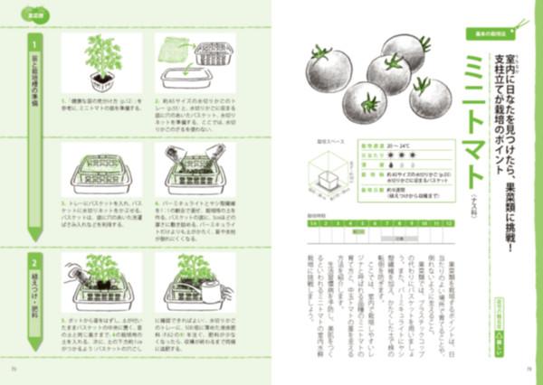 Uchinaka_tomato_01